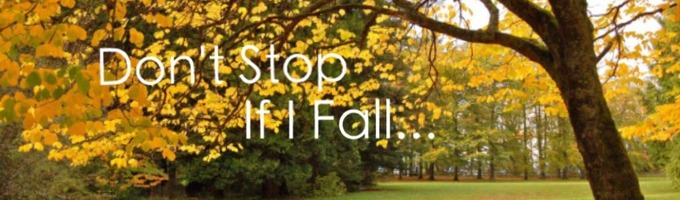 Don't Stop If I Fall